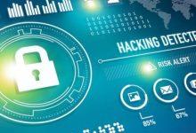 Поиск уязвимостей в веб-приложениях — Tulpar 5