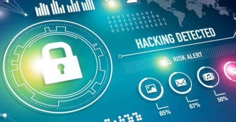 Поиск уязвимостей в веб-приложениях — Tulpar 1