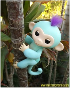 Fingerlings Review