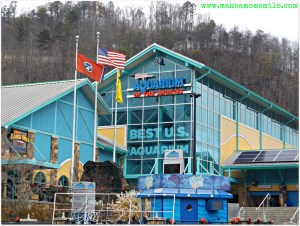 Ripley's Attractions in the Smokies
