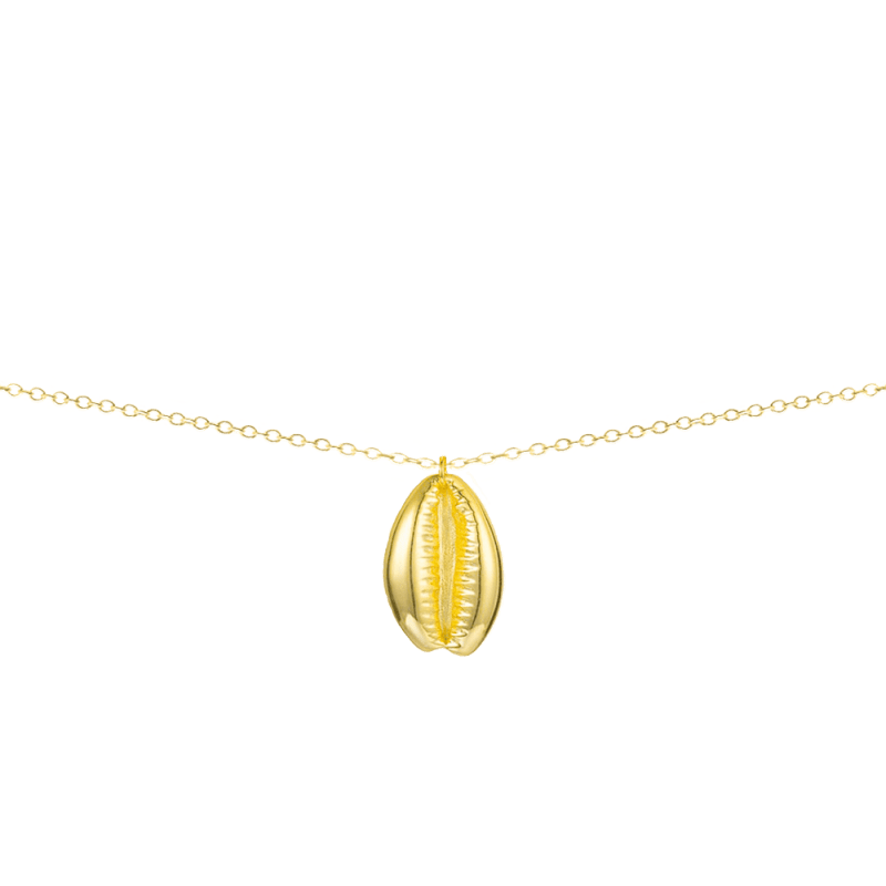 Collar con colgante concha en plata de ley bañado en oro 18k