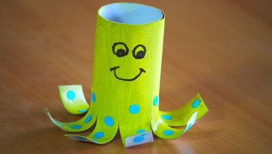 How to make a Toilet Roll Octopus