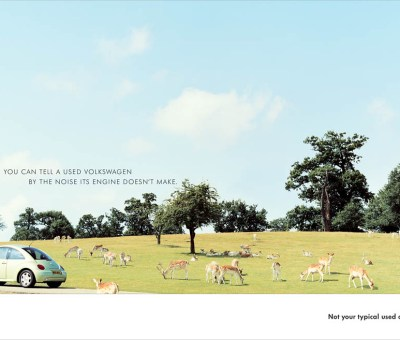 Volkswagen - Deer