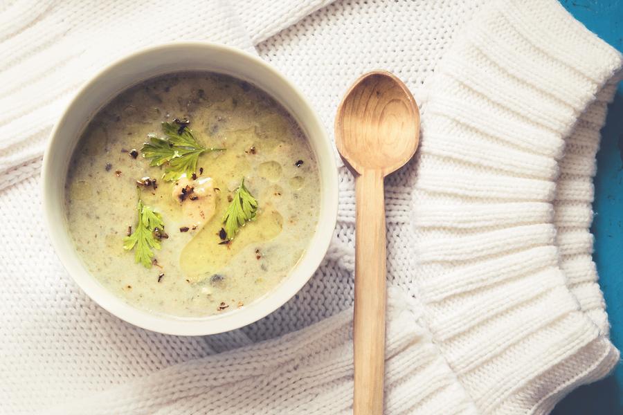 Chicken cream stew on white knitted sweater