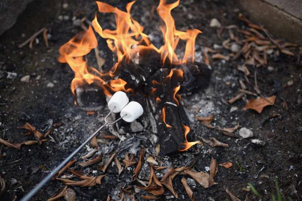 Roasting marshmallows for s'mores and summer camping