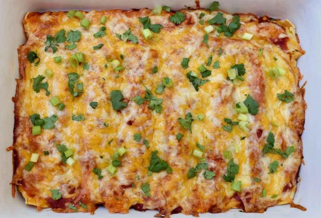 Chipotle cheese enchiladas recipe