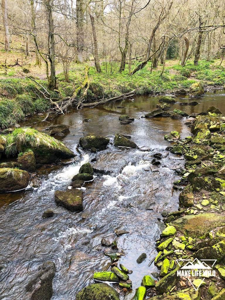 Stream on the walk near Mallyan Spout and Thomason Foss