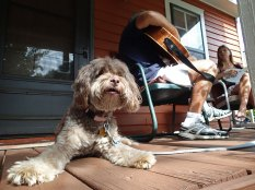 Shasta does a little porch sitting while Greg and niece Ariadne play some tunes.