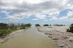 Snake Bight Bay.