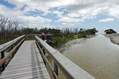 The Boardwalk at Snake Bight Bay.