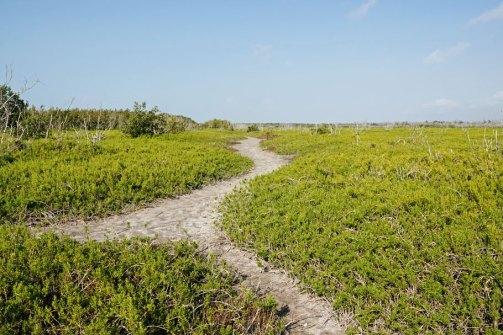 The Prairie Trail.