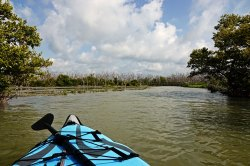 A view of the Snake Bight Channel and the boardwalk from the water.