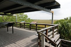 Deck overlooking the grassy waters of the Glades.