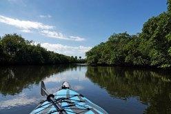 Kayaking on the E.G. Simmons Canoe trail.