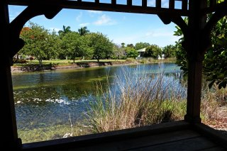 View of the pond at Palma Sola.