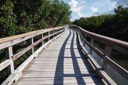 Boardwalk at Robinson Preserve.