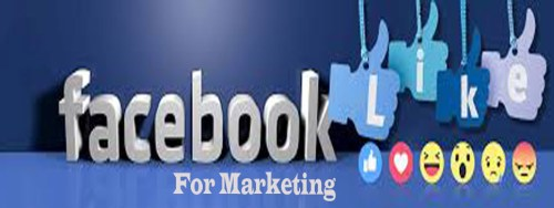 Use Facebook For Marketing to Grow your Business