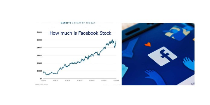 How much is Facebook Stock