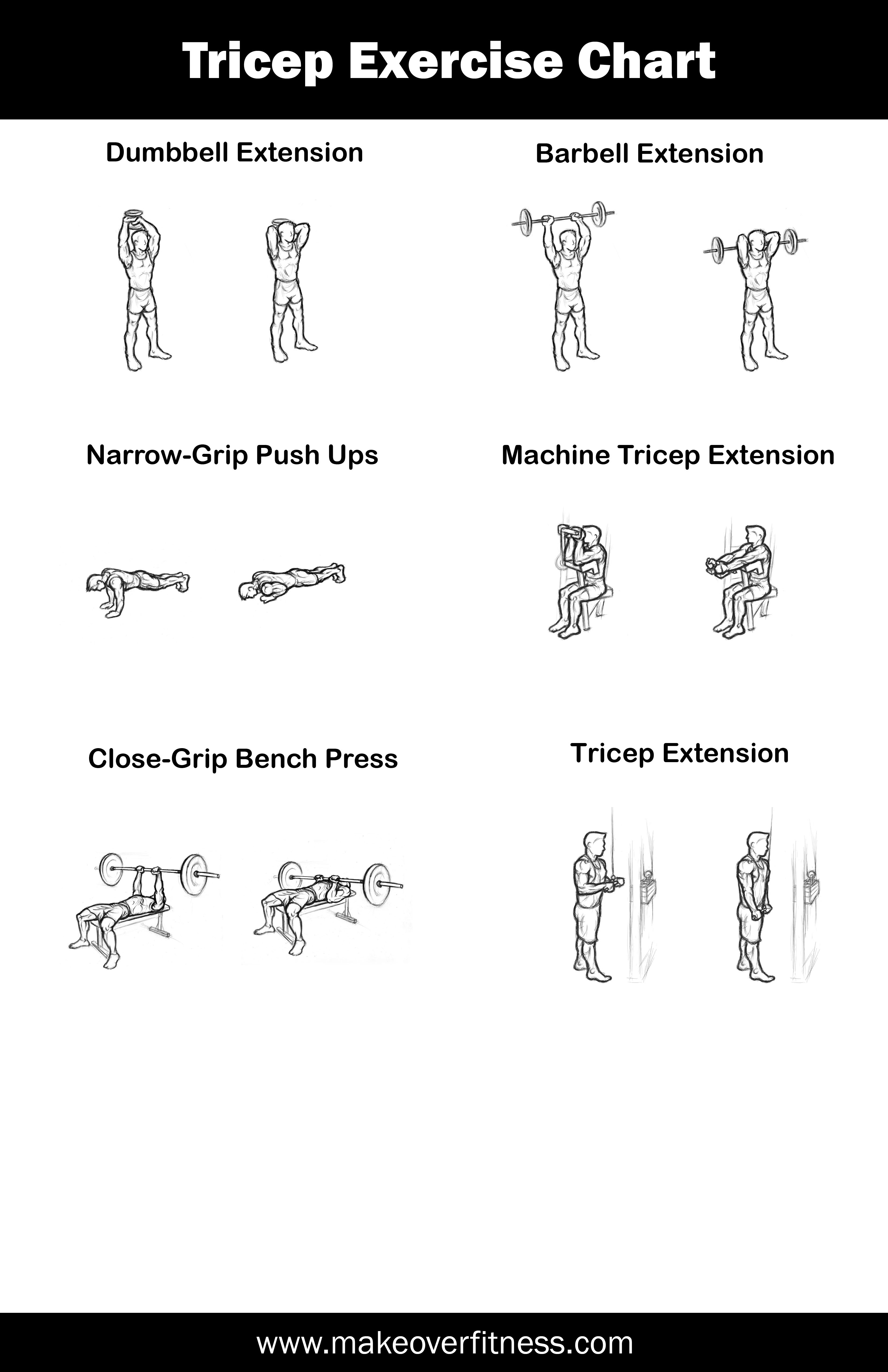 Tricep Exercise Charts