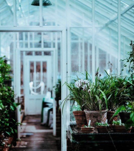 If I have another greenhouse