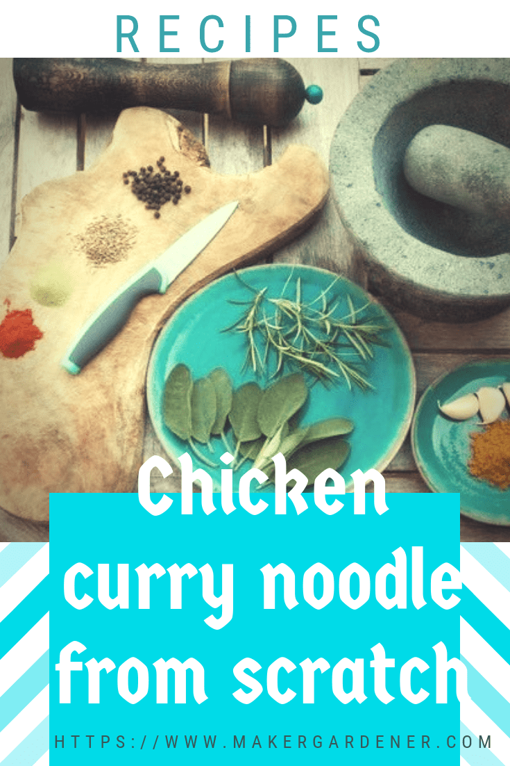 chicken curry noodle