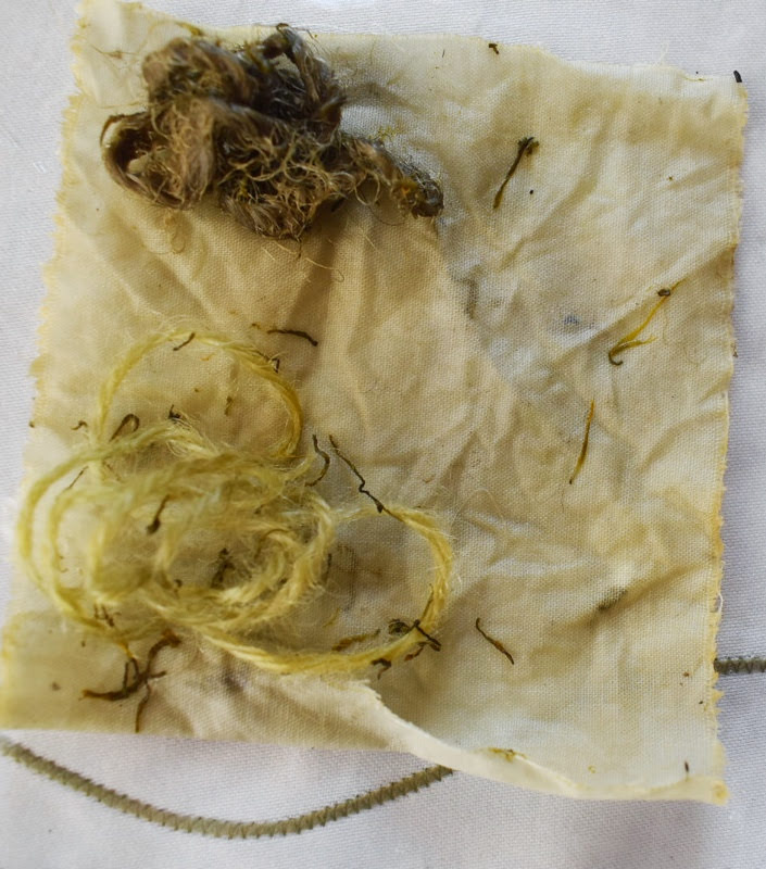 Fabric dyeing with dandelion