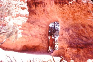 Me at Bryce Canyon 1979