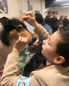 Grooming time at the MasonDixonCollieClub roadtowkc juniorhandler juniorshowmanship collielove Colliehellip