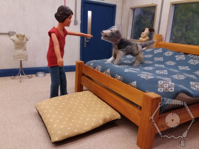 Harriet is in her bedsit with the dog. She is pointing at the dog bed. The dog is on Harriet's bed.