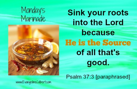 Monday's Marinade Ps 37-7