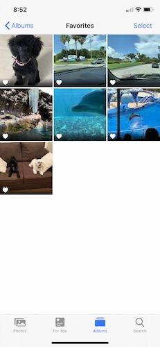 So organisieren Sie Fotos Iphone Favoriten