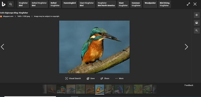 Ist Bing besser als das horizontale Scrollen von Google-Bildern mit Bing?