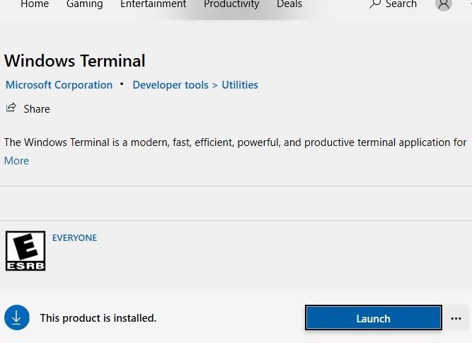 Start des Windows-Terminals