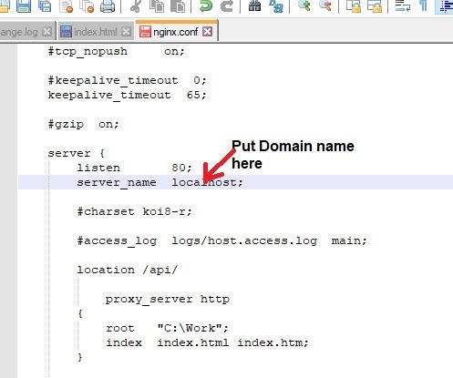 Nginx Windows Put-Domain-Name