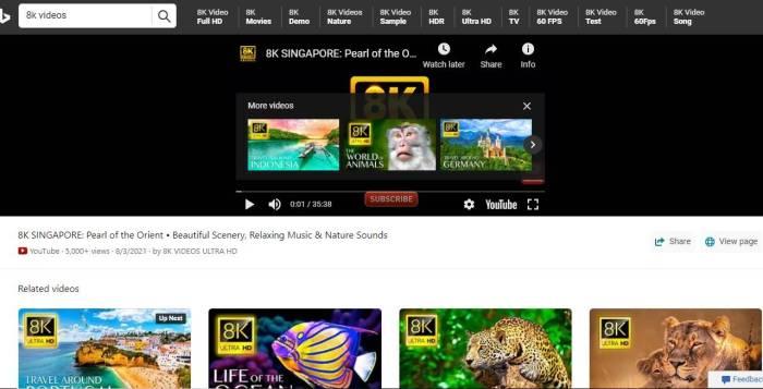 Ist Bing besser als Google Ähnliche Videos