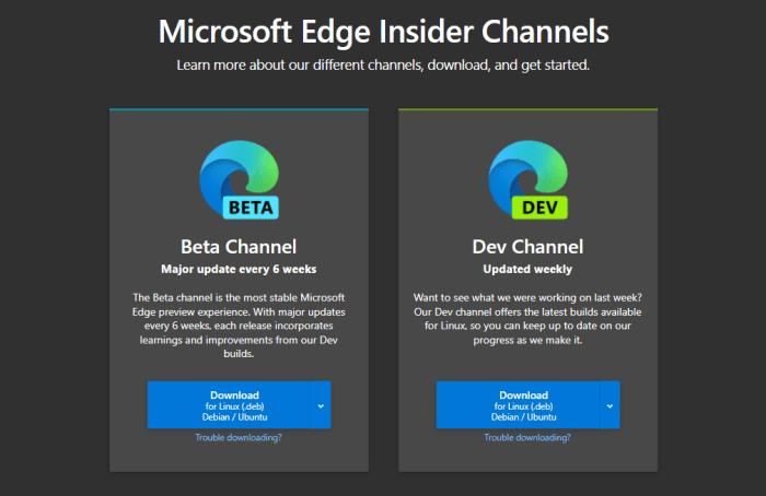 Edge Insider-Version