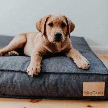 Minimalist style dog bed graphite 22