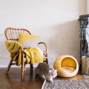 Luxurious yellow dandy cat ball 1