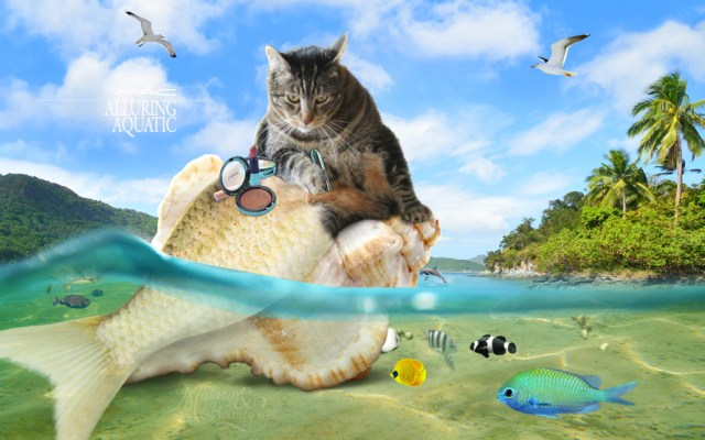 MAC Alluring Aquatic Collection Wallpaper Starring Tabs the Cat