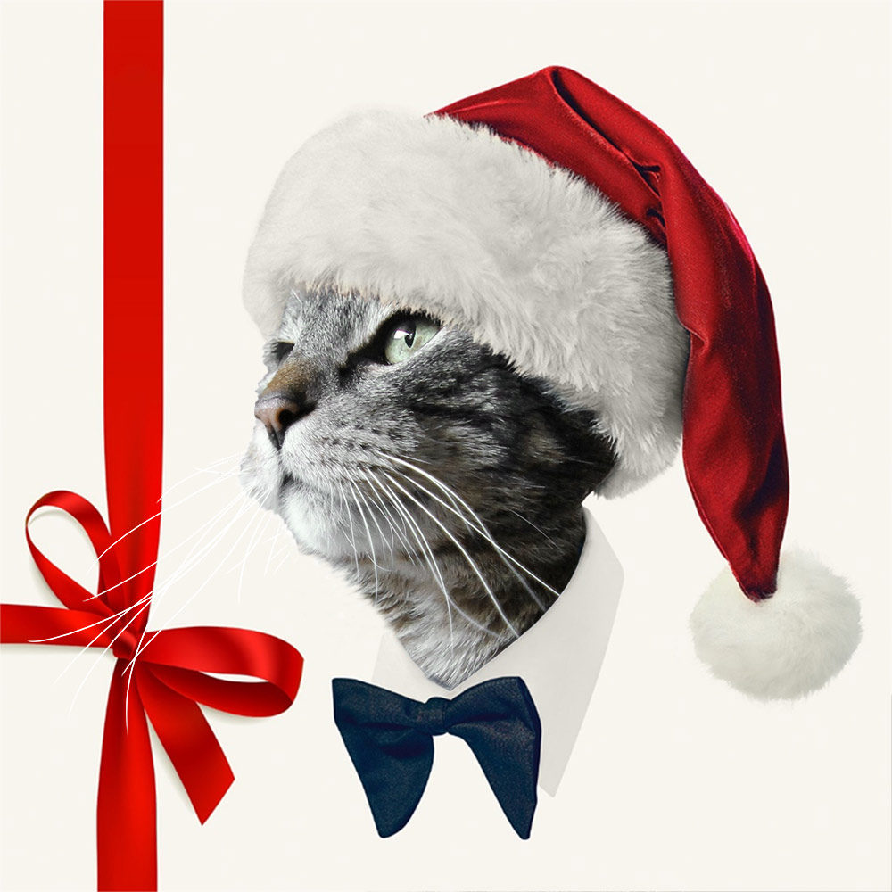 Tabs Christmas swagger
