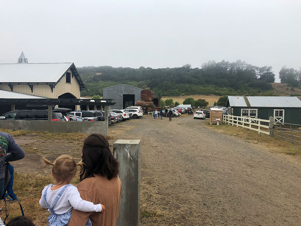 duckworth farms road