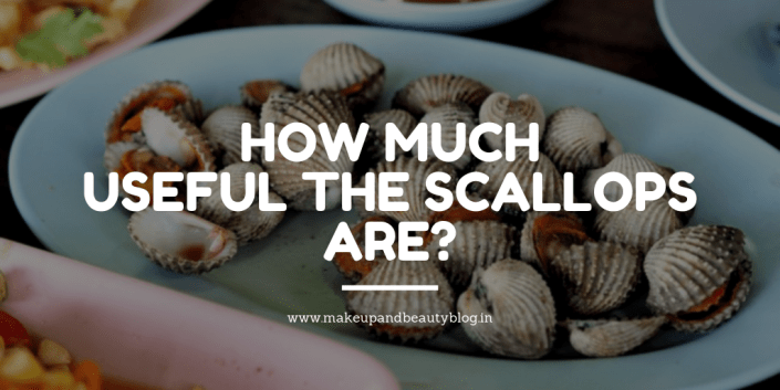 How Much Useful The Scallops Are?