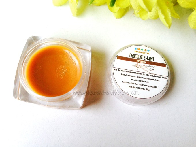 The Nature's Co Chocolate Lip Balm Review Price Pictures