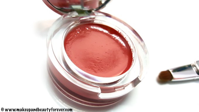 Colorbar Pout in a Pot Lipcolor 008 Charming Pink Review Swatch India