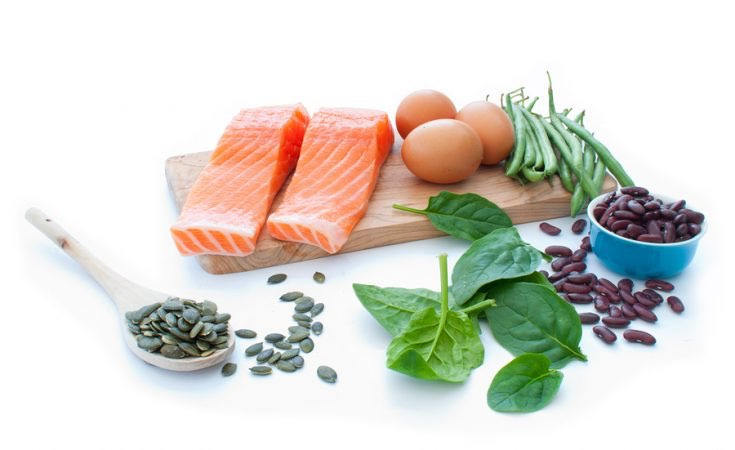 Food Rich in Protein Reduce Cravings Increase Calorie Burnt