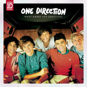 What Makes you Beautiful One Direction