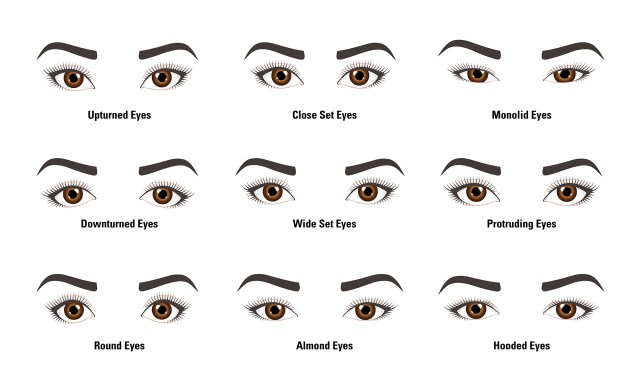 Eye Shapes For Makeup Makeup Tips Do You Know Your Eye Shape Lionesse Beauty Bar