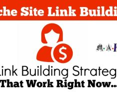 Link Building Strategies for Niche Sites