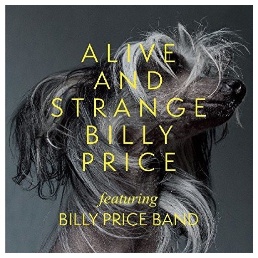 <a class=&quot;amazingslider-posttitle-link&quot; href=&quot;http://www.makingascene.org/billy-price-alive-strange/&quot;>Billy Price  Alive &amp; Strange</a>