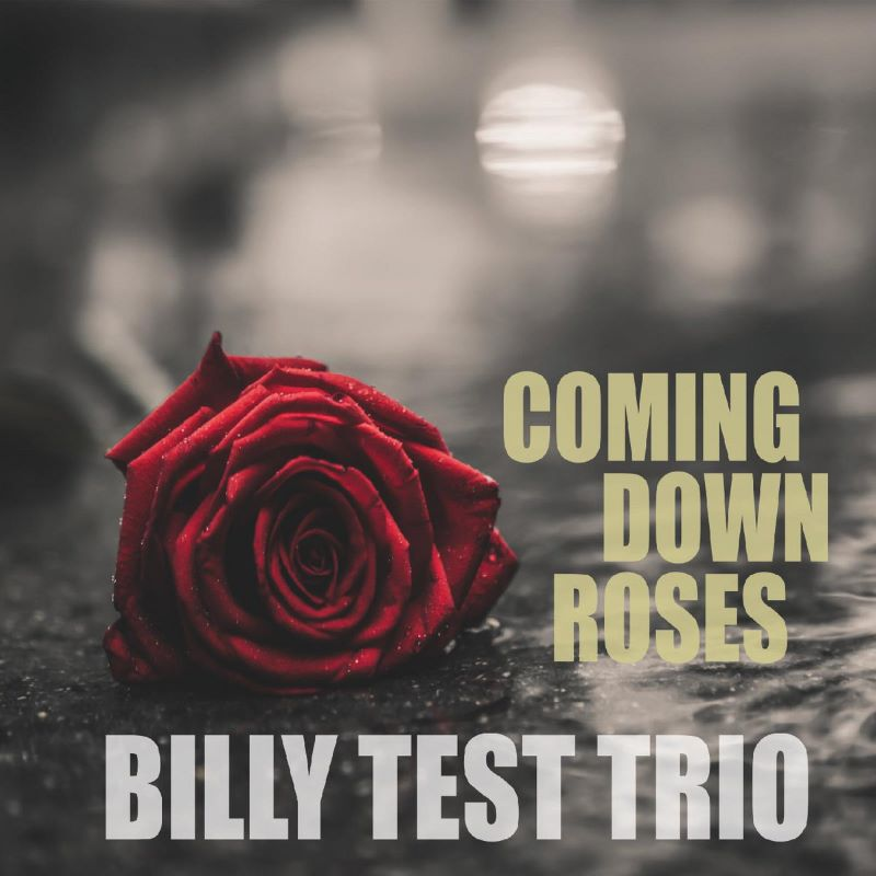 Billy Test Trio  Coming Down Roses
